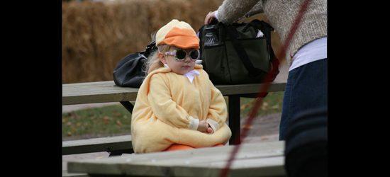 Cool ducks never 'quack' under pressure.