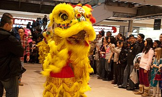 Yellow Chinese dragon dancing for the crowd