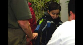 Boy posing for a photo with a stick insect at the Butter-Bug Station.