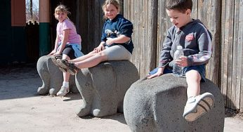 Several children sit down on the elephant-shaped rocks at the Toronto Zoo