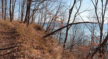 The Scarborough Bluffs were formed by glaciers at the end of the Ice Age thousands of years ago.