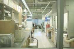 The funding would go to fund research in certain disciplines at UTSC, such as Environmental Studies and Mental Health.