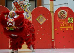 The red lion represents courage in Chinese culture and is most popular during New Year celebrations.