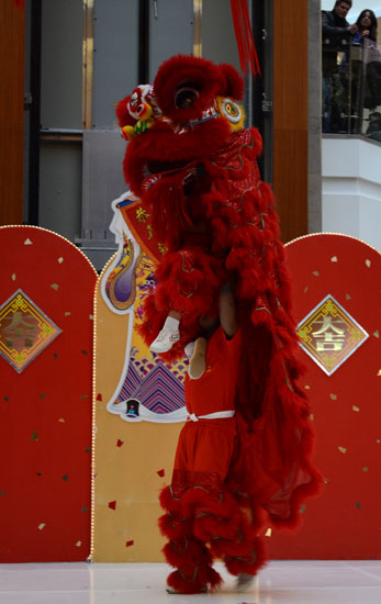 Kavin Ketheeswaran carries David Man — who is preparing to wave to the crowd with his foot — in this solo performance of the red lion at Scarborough Town Centre Sunday during Chinese New Year celebrations.