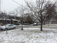 Snow falling on the street of Carlaw Avenue. (Bernard Toney/Toronto Observer)