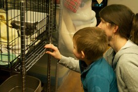 Grayson makes two new friends at the Adopt-a-Thon.