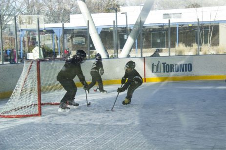 Mom does her best to stop her son at Greenwood Park ice rink.