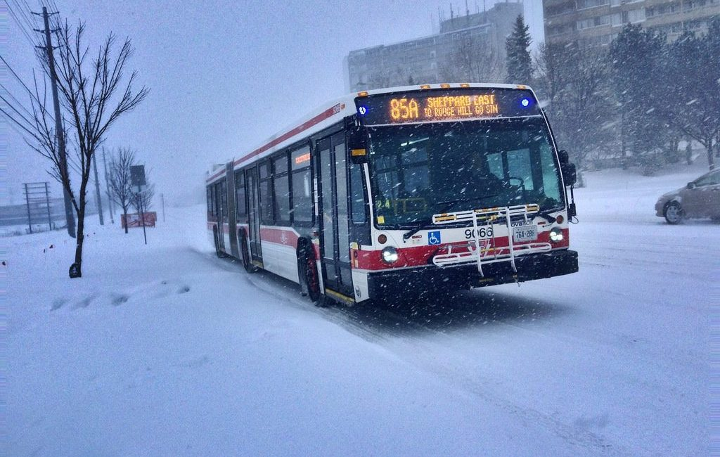 TTC bus