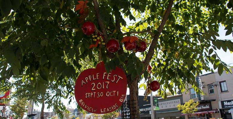 Apple Festival was held this past weekend in Leaside