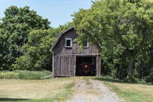 Barn_PE_County-2.jpg