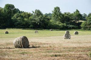 Hay_PE_County.jpg