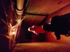 Legends of Horror Toronto Seoulcialite Casa Loma Things to Do on Halloween Toronto