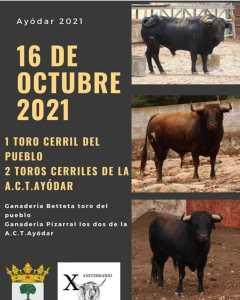 TOROS AYÓDAR 16 OCTUBRE 2021