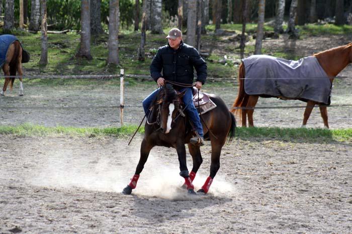 Att dansa med hästar.....Westernclinic med Per Larsson.... (3/6)