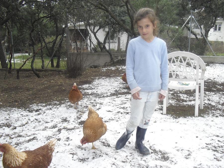 Nieve en Torrelodones