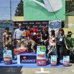 Evento canino Verdecora - Jurado Mauro Hernández de la clínica Ocuvet