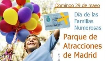 Día de la Familia Numerosa: Una oportunidad para pasar un día en familia por 50 euros