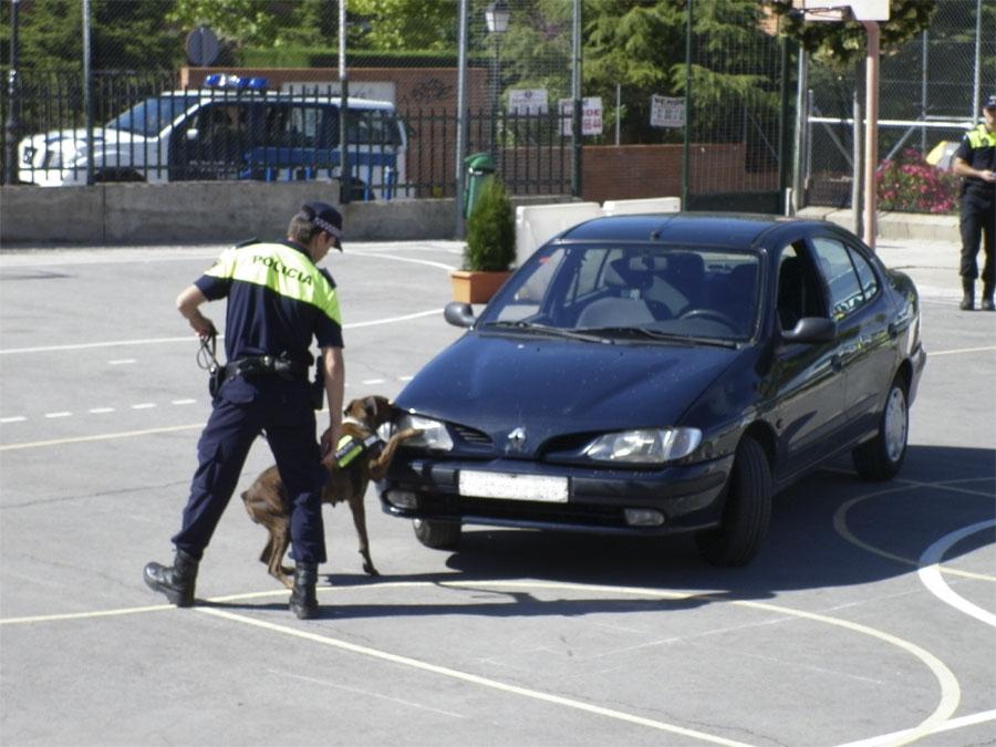 Exhibición canina de la Policía en el colegio Ntra. Sra. de Lourdes, en Torrelodones