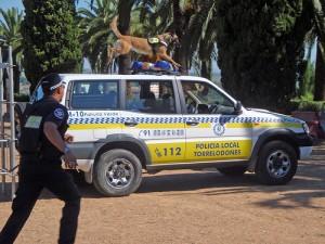 Unidad Canina de la Policía Local de Torrelodones, en Badajoz
