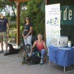 Avanza Torrelodones promueve la adopción de animaes