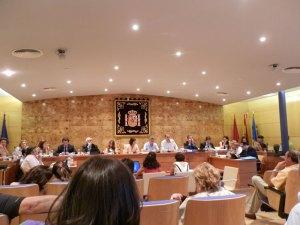 El Pleno del Ayuntamiento de Torrelodones debatió la propuesta de convenio para la construcción del túnel bajo la A-6