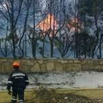 Protección Civil de Torrelodones colabora en el incendio de Robledo de Chavela