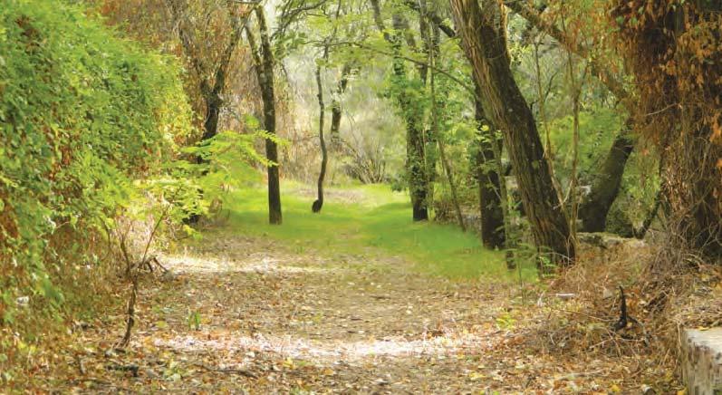 Nuevas sendas en el entorno del embalse y del Arroyo de Trofas (Peñascales, Torrelodones). (Fuente: Ayto. Torrelodones)