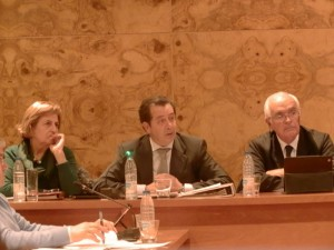 Pleno del Ayuntamiento de Torrelodones del 18/12/2012
