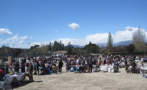 Mercadillo Popular de Torrelodones