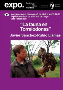 javier-sanchez-rubio-llamas