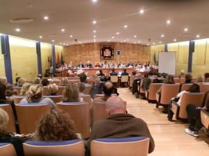 Pleno del Ayuntamiento de Torrelodones 18 de noviembre 2014