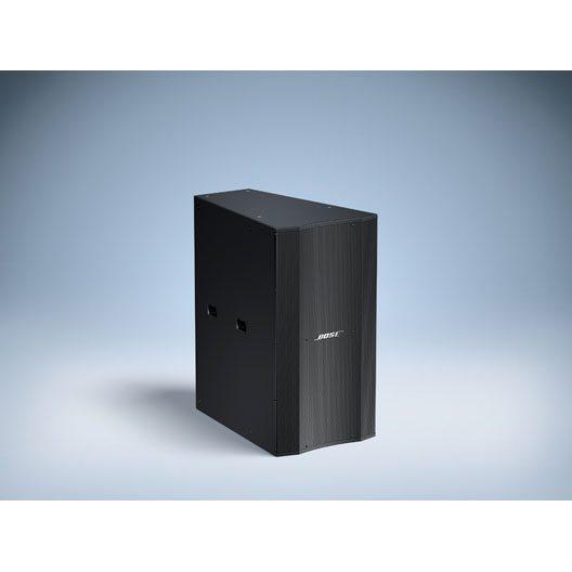 Bose LT 3202® WR