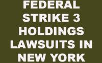 Strike 3 Holdings New York