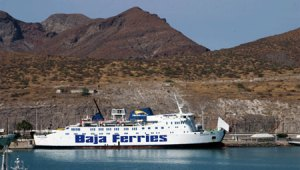 baja-ferry