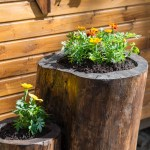 Tree Stump Decoration Ideas Torrestreeservicellc