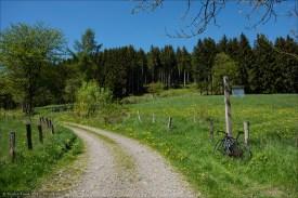 Feldweg im Rüsselbachtal.
