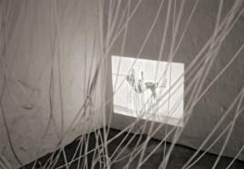 Patrick Timm, Ausstellungsansicht
