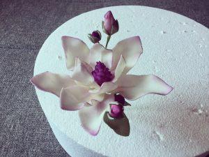 cukor-magnolia-keszitese-csokorba-kotve-tortaiskola-glazurshop-1 (1)