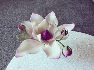 cukor-magnolia-keszitese-csokorba-kotve-tortaiskola-glazurshop-1 (6)