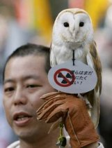 An anti-nuclear protester shows off his owl during a march in front of Tokyo Electric Power Co.'s (TEPCO) headquarters in Tokyo April 10, 2011.