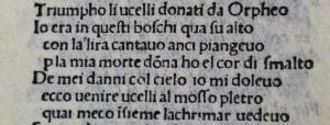 Leonardo da Vinci a Tortona fig. 8