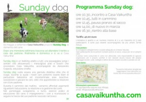 Depliant delle sunday dog di Casa Vaikuntha