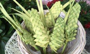 La tradizione della Palmina ai Bambini