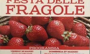 Volpedo – Festa delle Fragole maggio 2018