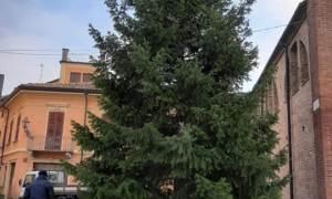 L'albero di Natale a Castelnuovo Scrivia si fa tutti insieme