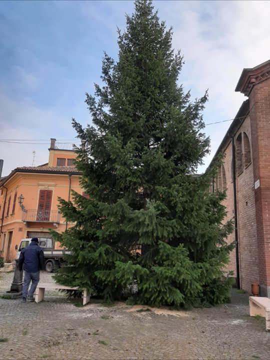 L'albero di Natale dei Castelnovesi in Piazza Vittorio Emanuele II
