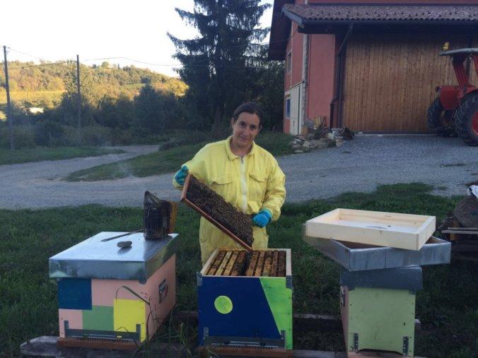 crisi settore apicolo