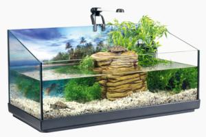 lampara lampara para tortugas acuaticas para lampara para tortugas tortugas acuaticas lampara acuaticas para b6YgvI7yf