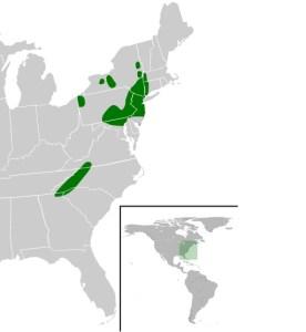 habitat tortu pantano