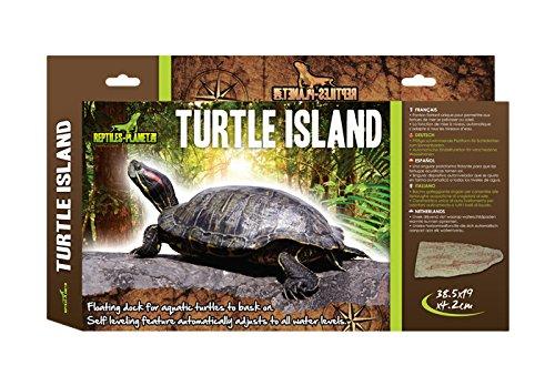 rampa para tortugas